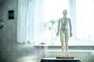 Craniosacrale Therapie ist Teil der Osteopathie